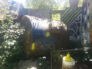 Duncan Mill Ruins (7)