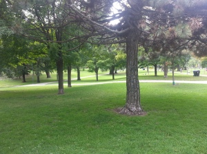 Withrow Park 8