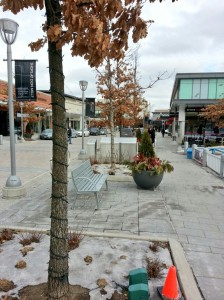 Shops at Don Mills Sidewalk 3