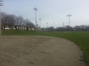 Greenwood Park Baseball Diamonds (1)