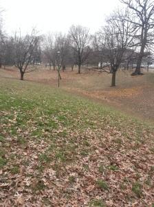 Monarch Park