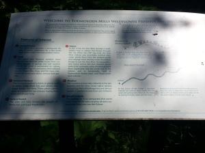 15. Wildflower Preserve Sign
