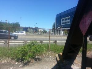 14. DVP from Old Eastern Avenue Bridge