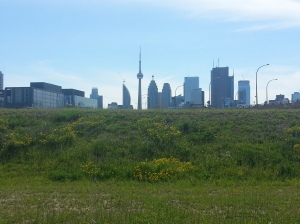 21. Toronto skyline from Corktown