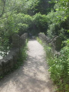 29. Riverdale Farm  bridge