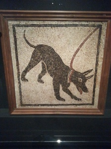 ROM Pompeii (9)