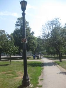 47. Trinity Bellwoods Park