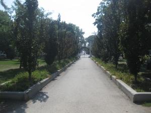 48. Trinity Bellwoods Park gates