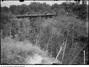 Item consists of one photograph of the Moore Park bridge at Avoca Vale. *** Local Caption *** Item consists of one photograph of the Moore Park bridge at Avoca Vale.