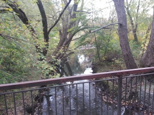 Birkdale Ravine 12