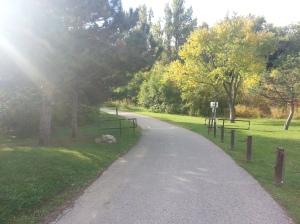 Birkdale Ravine 2