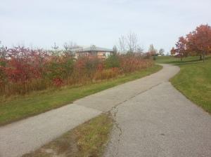 L'Amoreaux North Park 1