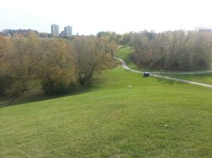 L'Amoreaux North Park 7