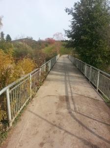 L'Amoreaux North Park 8