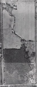 BrimleyWoods1965