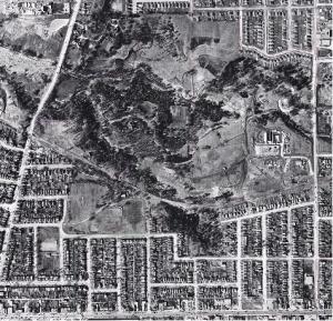CrescentTownAerial1956