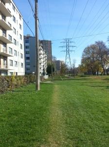 Dentonia Park Hydro Corridor