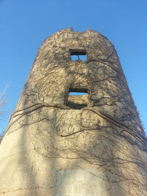 Ron Watson Park silo
