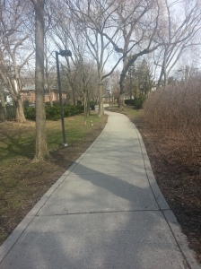 Willowdale Park 2